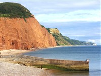 Sidmouth, South  Devon